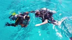 Operatori subacquei nel Mar Rosso archivi video