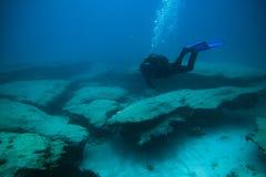 Operatori subacquei nell'immersione vicino alla scogliera, fotografie stock libere da diritti