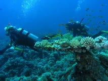 Operatori subacquei sulla scogliera Fotografie Stock