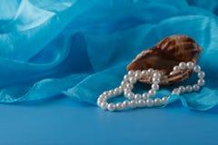 Operla, Łuska i Paua skorupa, i perła ornamenty na błękitnej draperii Obraz Stock
