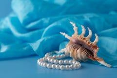 Operla, Łuska i Paua skorupa, i perła ornamenty na błękitnej draperii Zdjęcie Royalty Free