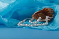 Operla, Łuska i Paua skorupa, i perła ornamenty na błękitnej draperii Zdjęcia Stock