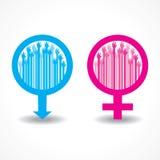 Opgeheven kleurrijk dient het mannelijke en vrouwelijke symbool in Royalty-vrije Stock Afbeelding