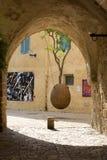 Opgeschorte oranje boom in Jaffa stock afbeelding
