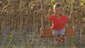 Opgewekte peuterjongen op boomschommeling in de zomer stock footage