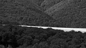 Opheldering, Forest Lawn Royalty-vrije Stock Afbeeldingen