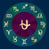 ophiuchus 13th вектор гороскопа зодиака знаков нарисованный рукой Стоковое фото RF