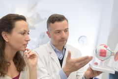 Ophthalmologist explaining patient with model eye Stock Photos