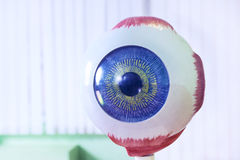 Ophthalmology oculus sample closeup Royalty Free Stock Images