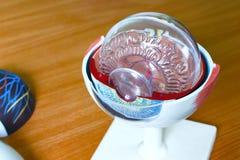 Ophthalmology oculus sample closeup Stock Images
