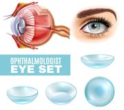 Ophthalmology Realistic Set. Of contact lens and human eye anatomy in side view isolated vector illustration Stock Photography