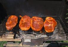 Opieczenia mięso Obraz Royalty Free
