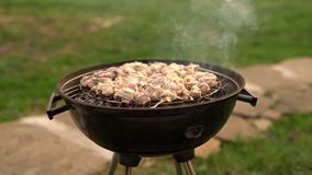 Opieczenie grilla spotkanie na grillu outdoors w podw?rzu Lato czasu pinkin Pra?aka mi?so na metal siatce na gor?cych w?glach dym zbiory