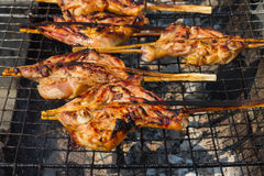 Opieczenie kurczak na węgla drzewnego grillu Zdjęcia Stock