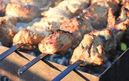 Opieczenie szaszłyk na grilla grillu Fotografia Royalty Free
