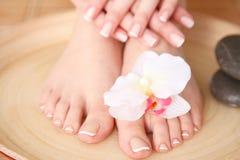 Opieka dla pięknych kobiet nóg z kwiatem piękne nogi odosobnione tła nad białą kobietą Obrazy Stock