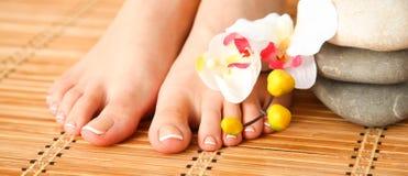 Opieka dla pięknych kobiet nóg z kwiatem piękne nogi odosobnione tła nad białą kobietą Obraz Royalty Free