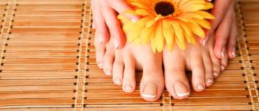 Opieka dla pięknych kobiet nóg z kwiatem piękne nogi odosobnione tła nad białą kobietą Obrazy Royalty Free