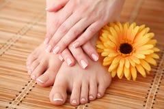 Opieka dla pięknych kobiet nóg z kwiatem piękne nogi odosobnione tła nad białą kobietą Fotografia Royalty Free