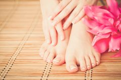 Opieka dla pięknych kobiet nóg z kwiatem piękne nogi odosobnione tła nad białą kobietą Fotografia Stock