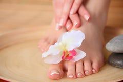 Opieka dla pięknych kobiet nóg z kwiatem piękne nogi odosobnione tła nad białą kobietą Zdjęcie Royalty Free