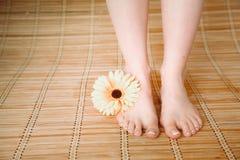 Opieka dla pięknych kobiet nóg z kwiatem piękne nogi odosobnione tła nad białą kobietą Zdjęcia Royalty Free