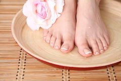 Opieka dla pięknych kobiet nóg z kwiatem piękne nogi odosobnione tła nad białą kobietą Zdjęcia Stock