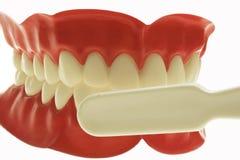 opieka zęby zdjęcia stock