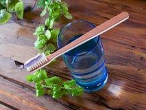 opieki naturalny stomatologiczny Zdjęcia Stock