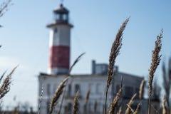 Opiekuny brzeg Latarnia morska obrazy royalty free