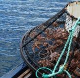 Opilio螃蟹渔在阿拉斯加 免版税库存图片