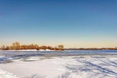 Opinião árvores e álamos de salgueiro perto do rio de Dnieper em K imagem de stock