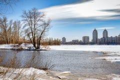 Opinião árvores e álamos de salgueiro perto do rio no duri de Kiev imagens de stock