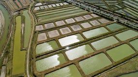 A opinião aérea as ostras cultiva em Marennes, Charente marítimo fotografia de stock