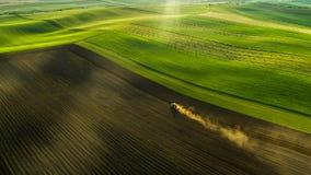 Opinião aérea campos e colheitas de trigo no verão com o trator no trabalho fotografia de stock royalty free