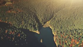 Opinião aérea da cena de madeira do nascer do sol do lago high mountain filme