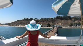 Opinião aérea da mulher de Malibu video estoque