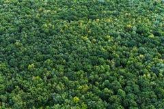 Opinião aérea da paisagem Fotos de Stock
