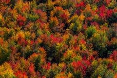 Opinião aérea da paisagem Fotografia de Stock Royalty Free