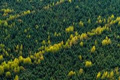 Opinião aérea da paisagem Imagens de Stock