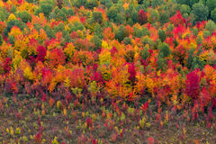 Opinião aérea da paisagem Foto de Stock Royalty Free