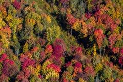 Opinião aérea da paisagem Foto de Stock