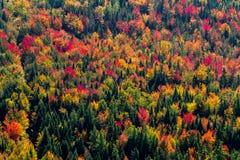 Opinião aérea da paisagem Fotos de Stock Royalty Free
