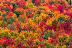 Opinião aérea da paisagem Imagem de Stock Royalty Free