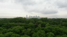 Opinião aérea de Forest Skyline da cidade vídeos de arquivo