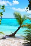 Opinião aérea de Maldivas Foto de Stock Royalty Free