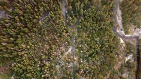 Opinião aérea de parque nacional de Yosemite de cima de video estoque