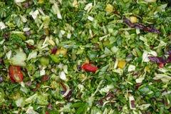 Opinião aérea desbastada dos vegetais Preparado como alimentos para animais de estimação frescos foto de stock royalty free