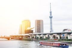 Opinião aérea do olho moderno panorâmico do pássaro da skyline da cidade com o skytree de tokyo sob o céu nebuloso bonito no Tóqu Imagens de Stock