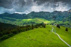 Opinião aérea do prado alpino suíço Fotografia de Stock